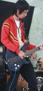 vis bass